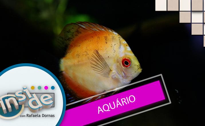 Thumb aquario
